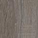 archico oak