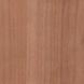 rumunská čerešňa